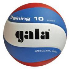 Мяч волейбольный TRAINING
